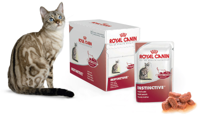 royal canin cat instinctive pouches. Black Bedroom Furniture Sets. Home Design Ideas
