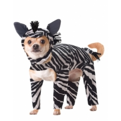 Animal_Planet™_Zebra_Dog_Costume