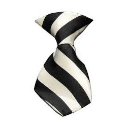 Dog Neck Tie White
