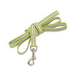 lime green reflective dog lead