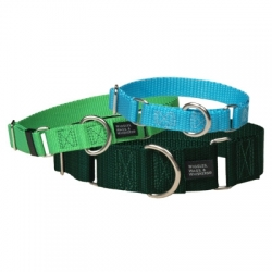 "1.5"" Nylon Martingale Collars"