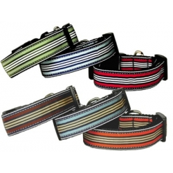 Prepp Strip dog collar