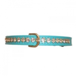 turquoise diamante dog collar