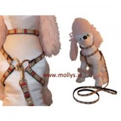 red stripe small dog harness