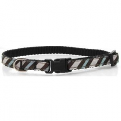 Blue Zebra Dog Collar