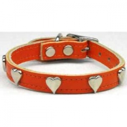 Orangeleather dog collar