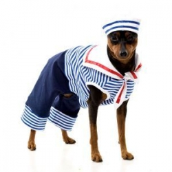 sailor dogs costume