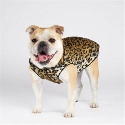 dogs fleece