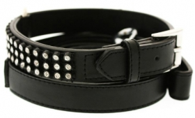 Black Leather Collar and Lead
