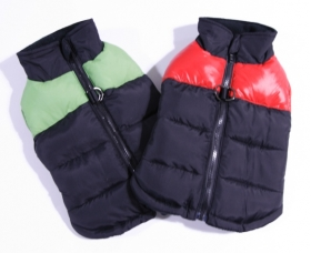 Padded Zipper Jacket