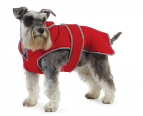 large dog vest