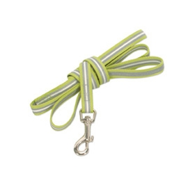 lime green reflective dog lead