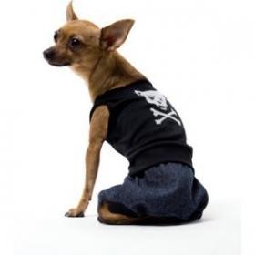 bad boy dogs costume