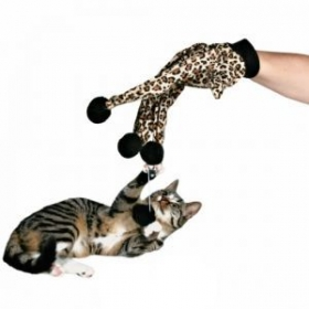 cat toy glove