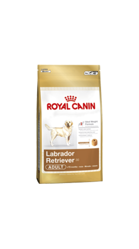 royal canin labrador retreiver food